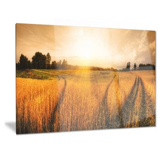Designart 'Wheat Field at Sunset Panorama' Photo Metal Wall Art