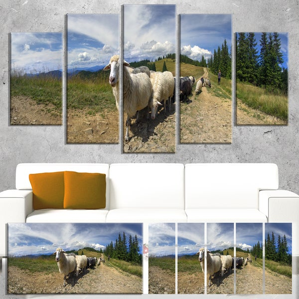 Shepherd and Sheep of Carpathian - Landscape Wall Art