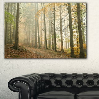 Path in Misty Autumn Forest - Landscape Wall Art