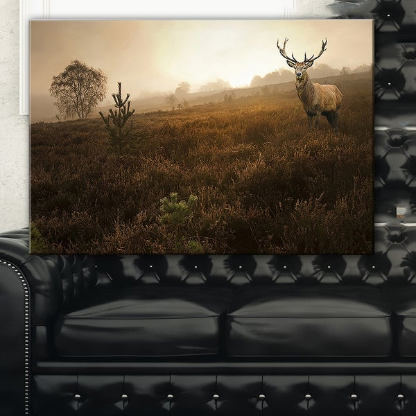 Mist Forest with Red Deer Stag - Landscape Photo Canvas Art Print