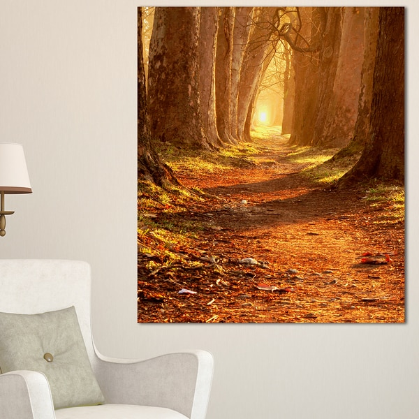 Magic Morning at the Fall Park - Landscape Photography Wall Art