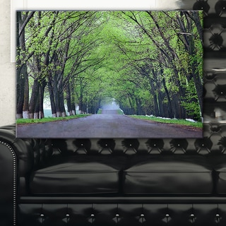 Arched Trees Over Country Road - Landscape Photo Canvas Print - Green