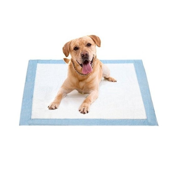 Best Disposable Puppy Wee Wee Housebreaking 17-inch x 24-inch Super-absorbent Underpads (Case of 300)