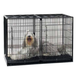 ProSelect Steel Extra Tall Modular Dog Kennel and Cage with Plastic Tray