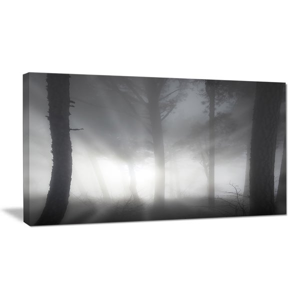 Forest in Heavy Autumn Mist - Landscape Photo Canvas Art Print