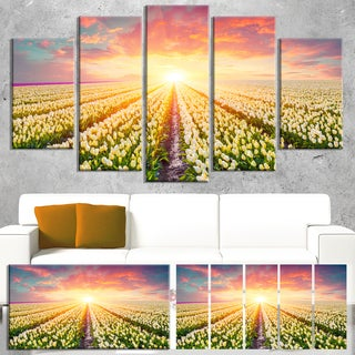 Blooming White Tulips - Landscape Large Wall Art
