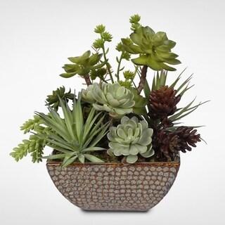 Ceramic Pot Succulent Centerpiece