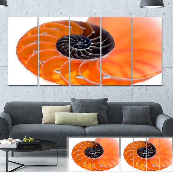 Orange Nautilus Shell - Abstract Art Canvas Print