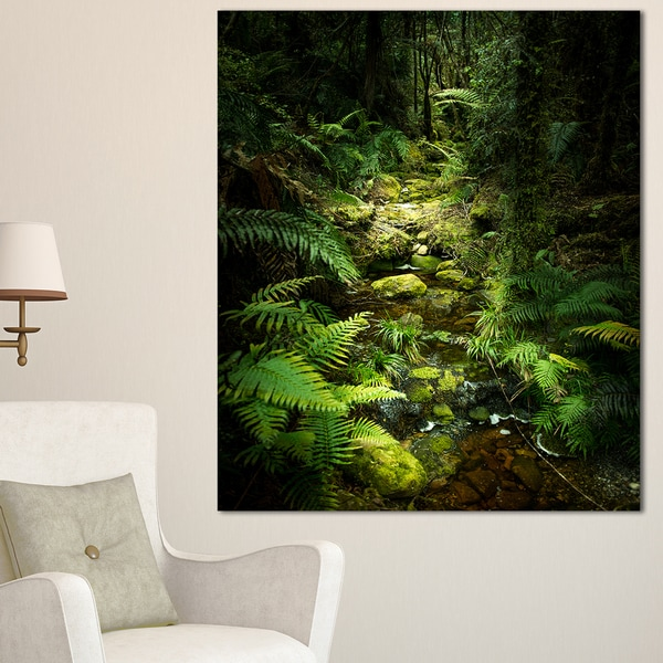 Green Forest of New Zealand - Landscape Photo Canvas Art Print