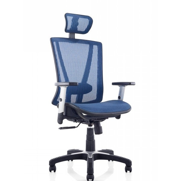 Ergomax Fully Meshed Blue Ergo Office Chair with Headrest 19459118
