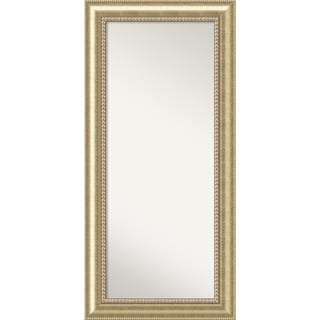 Wall Mirror Choose Your Custom Size - Oversized, Astoria Champagne Wood