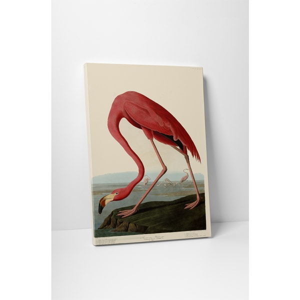 Classic Masters Audubon John 'American Flamingo' Gallery-wrapped Canvas Wall Art