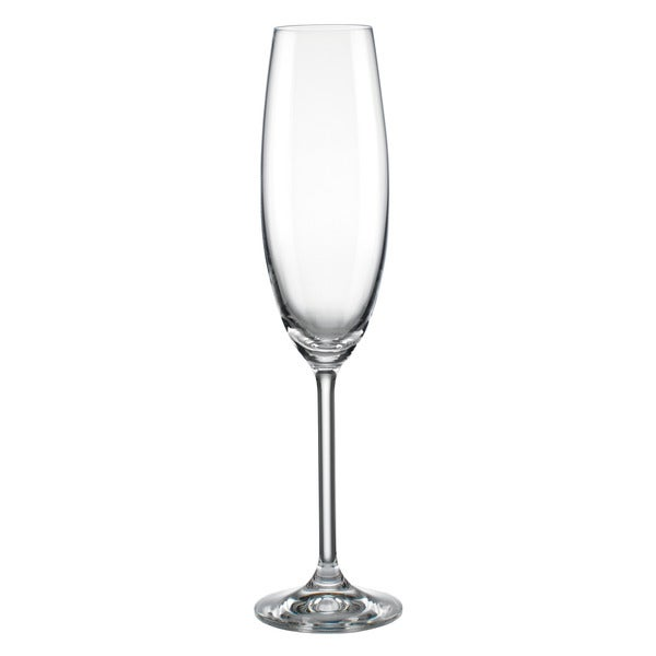 Lenox Tuscany Classics Clear Party Flute Glasses (Pack of 6)