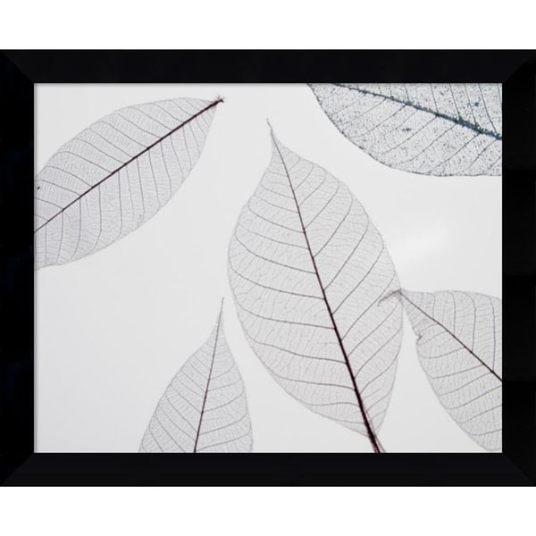Framed Art Print 'Sheer Leaves I' by Art Photo 11 x 9-inch 19547454