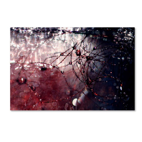Beata Czyzowska Young 'Galaxy Far Away' Canvas Art