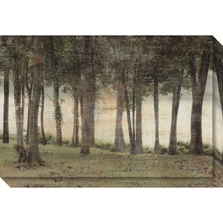 Canvas Art Gallery Wrap 'Forest' by Erin Clark 30 x 20-inch
