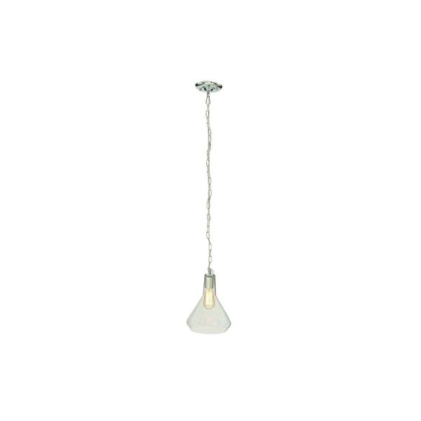 Clear Glass Iron Hanging Pendant Light with Bulb 19563306