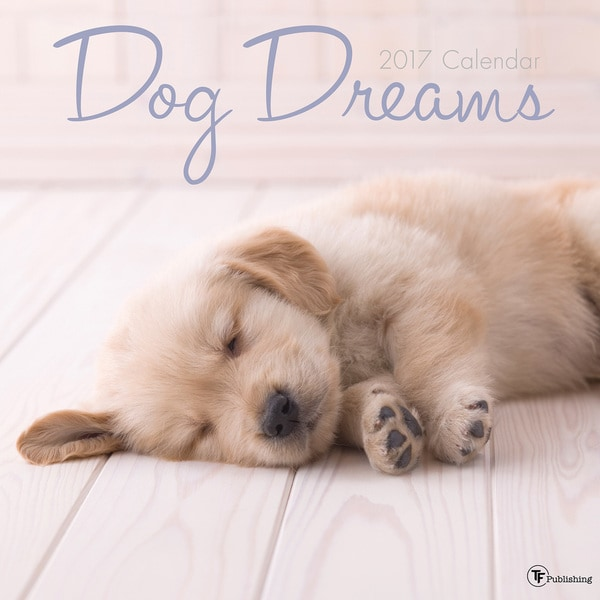 2017 Dog Dreams Wall Calendar