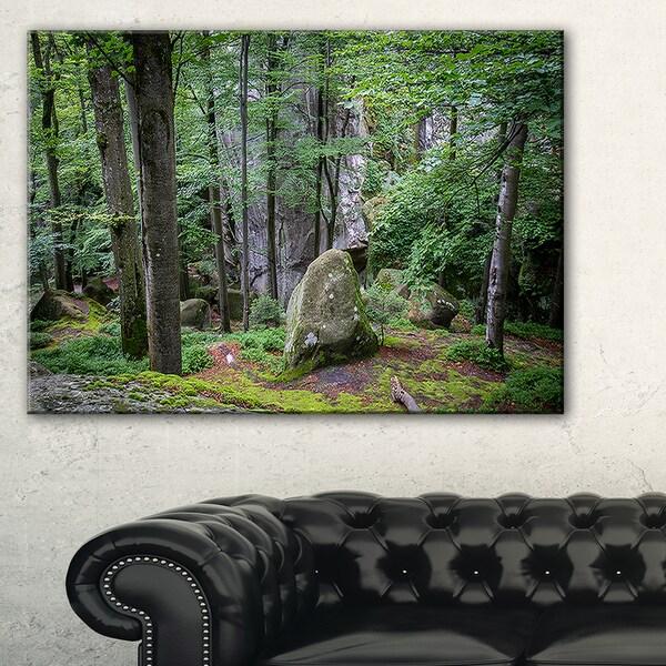 Dense Moss Forest in Green - Landscape Art Print Canvas 19597631