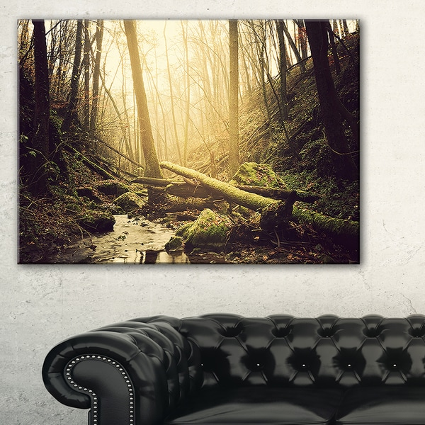 Stream in the Dark Wild Forest - Large Forest Wall Art Canvas