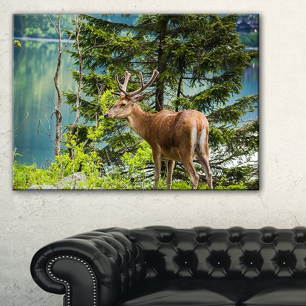 Designart - Deer Stag near the Lake - Animal Canvas Art Print