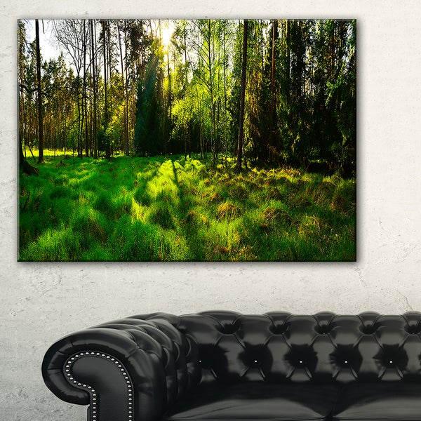 Green Forest Sunset Panorama - Landscape Artwork Canvas