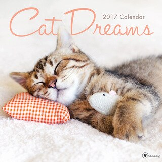 2017 Cat Dreams Wall Calendar