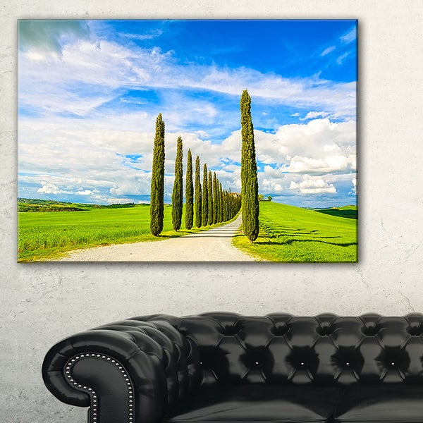 White Road through Cypress Trees - Oversized Landscape Wall Art Print