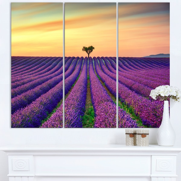 Lavender Flower Rows in Provence - Oversized Landscape Wall Art Print
