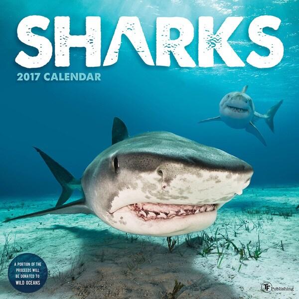 2017 Sharks Wall Calendar