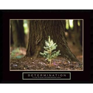 Framed Art Print 'Determination: Little Pine' 29 x 23-inch