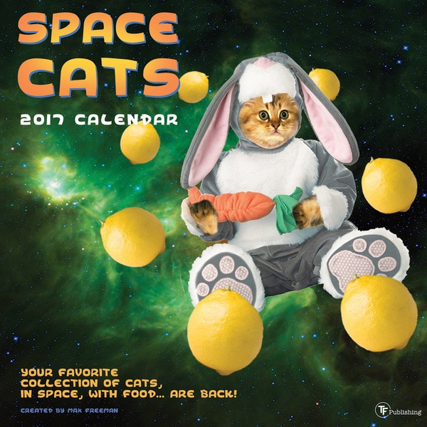 2017 Space Cats Wall Calendar