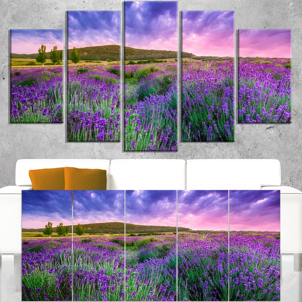 Summer Lavender Field in Tihany - Modern Landscape Wall Art Canvas