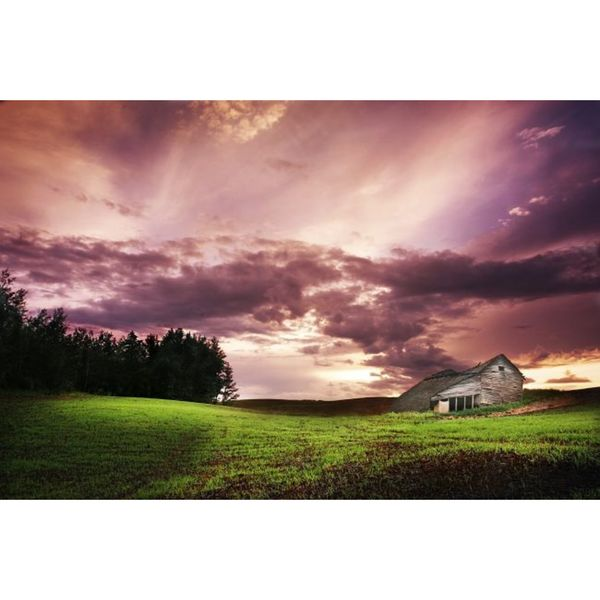 Design Pics 'A Lonely Farm Building in an Open Field' Gallery-wrapped Canvas