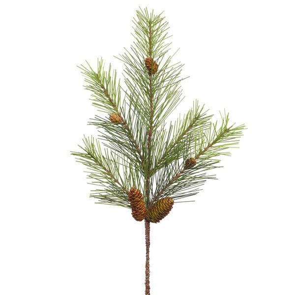 24-inch White Pine Spray with Cones and 5 Tips
