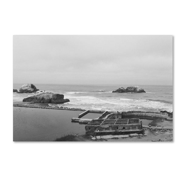 Ariane Moshayedi 'Lands End San Francisco' Canvas Art