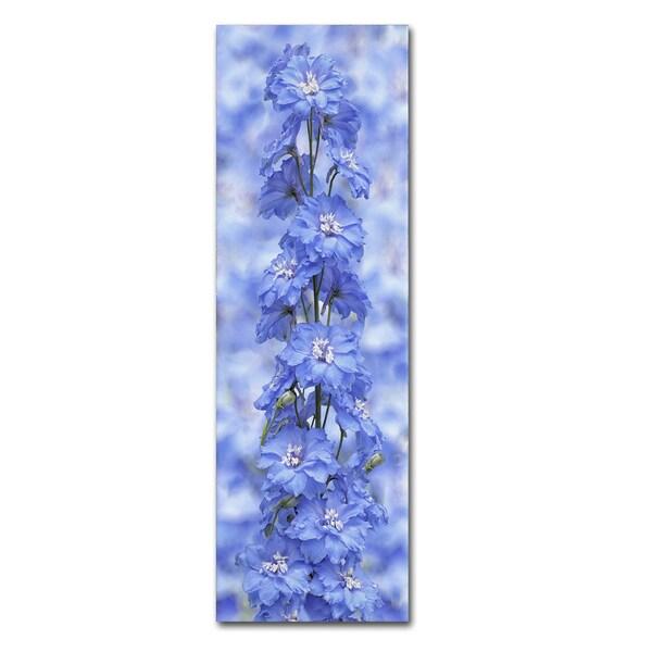 Cora Niele 'Blue Larkspur' Canvas Art