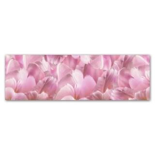 Cora Niele 'Pink Tulip Scape' Canvas Art