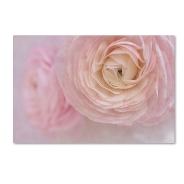 Cora Niele 'Soft Pink Flower Bouquet' Canvas Art