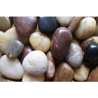 Exotic Pebbles & Aggregates PMS-1030 5-pound Mixed Polished Pebbles