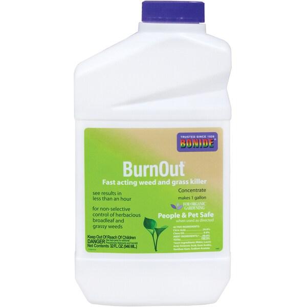 Bonide 7464 1 Quart BurnOut Weed & Grass Killer Concentrate