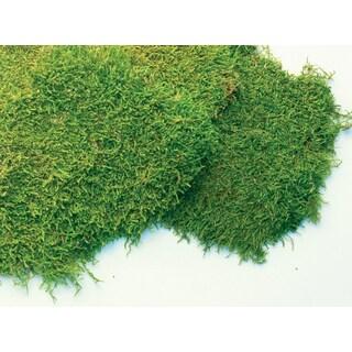 Super Moss 21585 32-ounce Fresh Sheet Moss