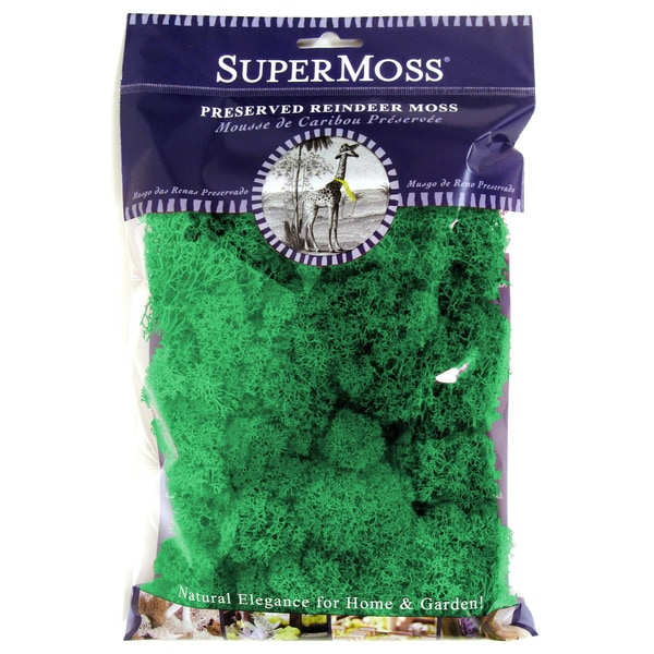 Super Moss 21703 2-ounce Forest Reindeer Moss 20017834