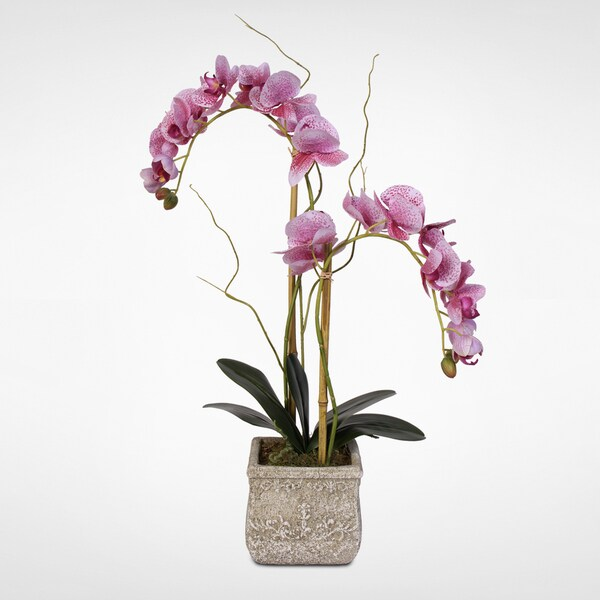 Pink Spotted Phalaenopsis Silk Orchid Arrangement in a Stone Pot