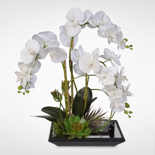 Real Touch White Phalaenopsis Silk Orchids with Succulents on a Mirrored Tray