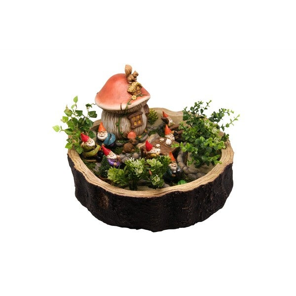 Gnome Miniature Garden Kit