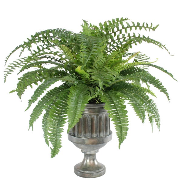 Jane Seymour Botanicals Green Boston Fern in 28-inch-tall Graphite Urn