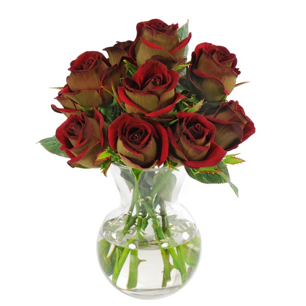 Jane Seymour Botanicals Red and Green Floribunda Rose Bouquet in 12-inch Clear Glass Vase