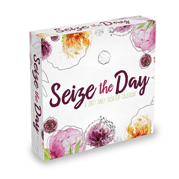 Seize the Day 2017 Daily Desktop Calendar 20235138