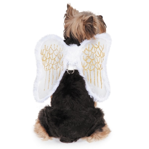 Zack & Zoey Fur-Trimmed Angel Wings Harness for Dogs with Removable Wings
